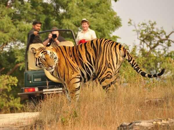 bandhavgarh_park